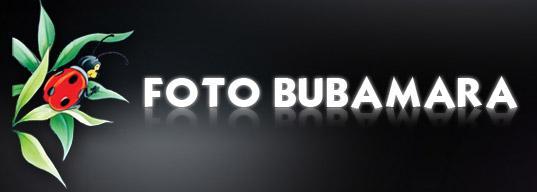 Foto Bubamara slika