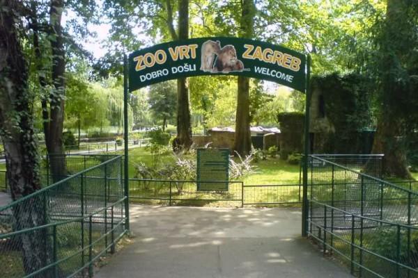 ZOO Zagreb slika