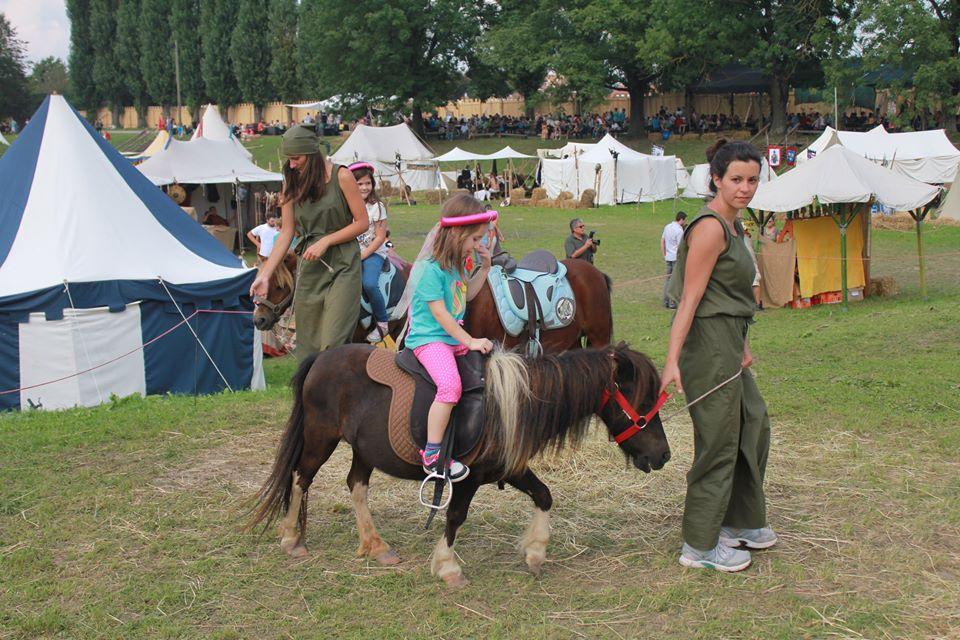 Ponyland slika