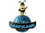 Igraonica CARPYLAND slika